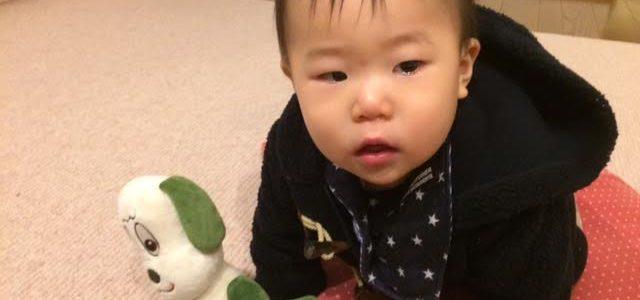 こーたん、1歳のお誕生日おめでとう!(^^)!