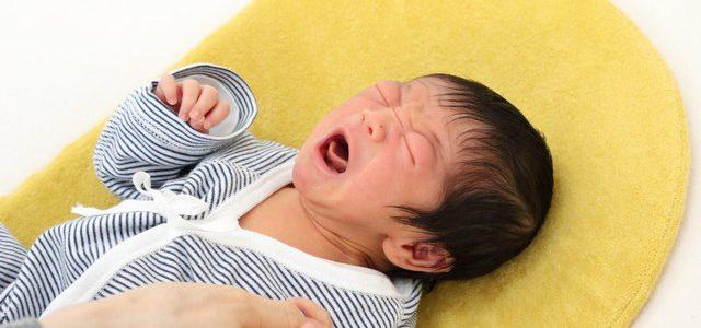 【産後ケア】こうくんが来てくれました♪