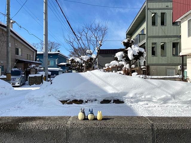 一人 雪 まつり お一人様参加OK 華やかに、盛大に、くり広げられる雪と