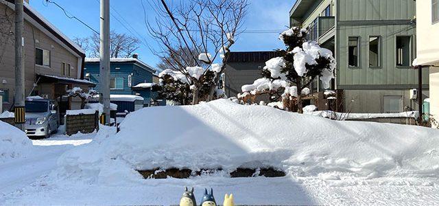 第2回ひとり雪まつり始まりました